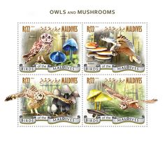 Post stamp Maldives MLD 14901 a	Owls and Mushrooms (Asio flammeus, Lactarius indigo, {…}, Asio flammeus, Leucocoprinus birnbaumii)