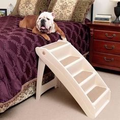 Find Pet Accessories in Randburg! Search Gumtree Free Classified Ads for Pet Accessories and more in Randburg. Pet Stairs, Stair Steps, Playpen, Pet Accessories, Pet Products, Baby Animals, Pets, Baby Pets, Stair Treads