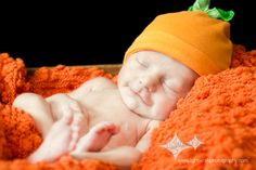 Newborn pumpkin patch