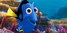 We break down every Finding Dory easter egg, hidden detail, behind-the-scenes explanation and clever reference to other Pixar movies. Nemo Y Dory, Dory Finding Nemo, Camp Rock, Lilo Stitch, High School Musical, Banner Aniversario, Dory Quotes, Andrew Stanton, Aquarium