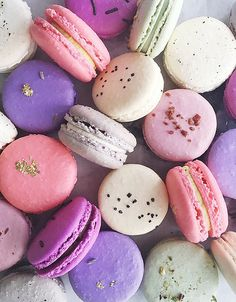 food cookies dessert sweet yum french delicious macarons sweets baking desserts