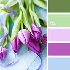 This palette embodies tenderness of spring, youth and femininity. Pistachio, misty green and blue-gray look very discreet, and lavender and Japanese pink p.