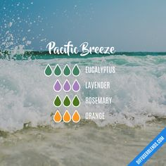 Pacific Breeze - Essential Oil Diffuser Blend