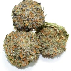 ing Kush for good reason, is derived from OG Kush and the elusive Grape strain. Not only is it an indica dominant strain, but it has an amazing 20% THC content. With a 70:30 indica/sativa ratio, it has much to offer.