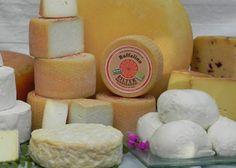 Biohof Eilte: die Verarbeitung der Kuh- und Büffelmilch erfolgt in der hofeigenen Käserei.