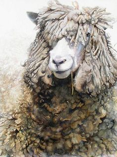 by Ann Balch - who varnishes her watercolours instead of framing under glass.- HERE'S LOOKIN' ATCHA, KID! Mixed Media (watercolor with archival acrylic varnish) x Art Watercolor, Watercolor Animals, Wooly Bully, Sheep Art, Illustration Art, Illustrations, Wow Art, Animal Paintings, Pet Portraits