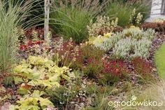 Ogród z lustrem