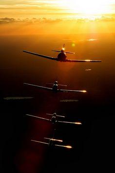 The Amazing Flying Machines