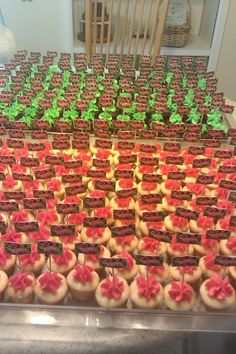 Open house mini cupcakes