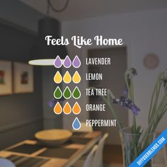 Feels Like Home - Essential Oil Diffuser Blend