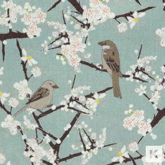 Emily Burningham - Hawthorn & Sparrows
