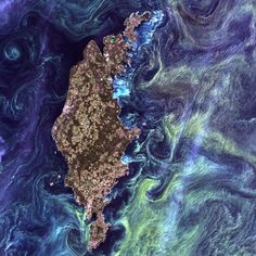 Gotland, Sweden In the style of Van Gogh's painting Starry Night, massive congregations of greenish phytoplankton swirl in the dark water around Gotland, a Swedish island in the Baltic Sea. Phytoplankton are microscopic marine plants that form the first link in nearly all ocean food chains.  Image taken by Landsat 7 on July 13, 2005
