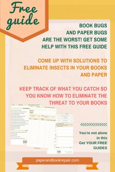 ipm on beetles essay Crop protection and pest control   hrm pest control essay  integrated pest management (ipm), also known as integrated pest control .