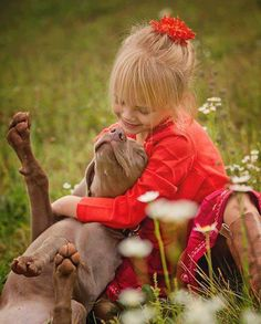 pit bull and girl