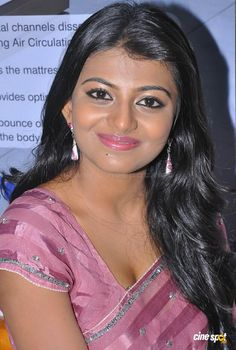 Haasika Saree Stills (20)