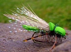 The Flies Of Yellowstone: July 2011