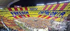 """Direnişteyiz! » Katalanlardan Bir Kez de Sandıkta """"Adiós España"""""""