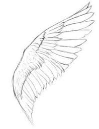 Image result for simple feather pen drawing