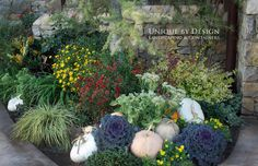 'Unique by Design Landscaping & Containers'