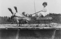 """Young girl being pulled on a """"turkey cart"""". Circa 1910."""