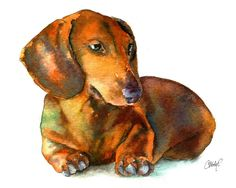 Dachshund Puppy Painting by Christy Freeman - Dachshund Puppy Fine Art Prints and Posters for Sale