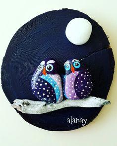 Baykuşlar - owl