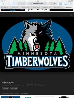 Timberwovles basketball