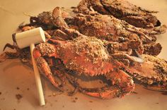 Top Maryland crab houses: Gunning's Seafood