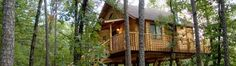 Treehouse Cottages: A Luxurious Forest Haven in Eureka Springs, Arkansas