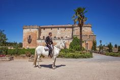 Wedding in Spanish Castle Spanish Wedding, Vaulting, The Locals, Castle, Horses, Wedding Planners, Gallery, Events, Animals