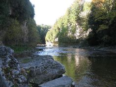 Elora Gorge Conservation Area, Elora Picture: In the gorge at Irvine Creek - Check out Tripadvisor members' candid photos and videos. Ontario, Nostalgia, East Sussex, Local Artists, Day Tours, Walking Tour, Conservation, Adventure Time, State Parks