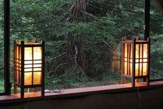 toplama malzeme 11000 dolar agac ev orman 7