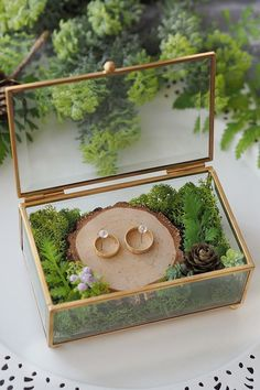 Amazing glass ring box with tropical theme. Ring Holder Wedding, Ring Pillow Wedding, Engagement Decorations, Indian Wedding Decorations, Wedding Gift Boxes, Wedding Favours, Wedding Crafts, Wedding Details, Our Wedding