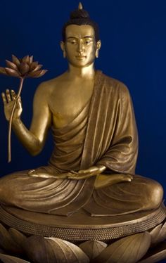 """""""As a lotus flower is born in water, grows in water and rises out of water to stand above it unsoiled, so I, born in the world, raised in the world having overcome the world, live unsoiled by the world"""". -- The Buddha"""