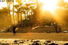 surf lifestyle   Tumblr