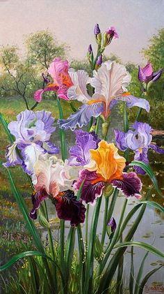 Iris art by Vladimir Ivanov Iris By The Water. Irises are one of my favorites! Iris are so beautiful in spring! So very pretty! Beautiful flowers from God ~ Wonderful picture from Vladimir Ivanov (artist). Artist: Vladimir Iva Flowers Garden of Love ~ Arte Floral, Watercolor Flowers, Watercolor Paintings, Watercolor Ideas, Iris Flowers, Flowers Garden, Botanical Art, Beautiful Paintings, Love Art