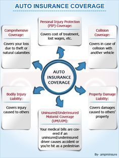 Auto Insurance Policy Coverages A minimal needs of business car insurance plan are identical using the private assurance.