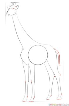 How to draw a realistic giraffe | Step by step Drawing tutorials