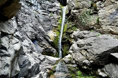 Rocky Mouth Falls - Six Family Friendly hikes to waterfalls in Utah Oh The Places You'll Go, Places To Travel, Utah Adventures, Waterfall Hikes, Utah Hikes, Family Outing, Summer Activities, Family Activities, Adventure Is Out There