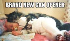 New Can Opener - Visit http://dailyhaha.com/pictures.htm for daily funny pictures.