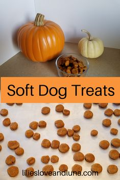 Easy to make 3 ingredient dog treats. These soft peanut butter and pumpkin dog treats are great for dog training. Soft Dog Treats, Homemade Dog Treats, Healthy Dog Treats, Doggie Treats, Roast Pumpkin, Canned Pumpkin, Pumpkin Puree, Dog Treat Recipes, Dog Food Recipes