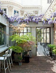 comment aménager son jardin avec des plantes rampantes en lila et en vert avec un bar et des chaises élégantes