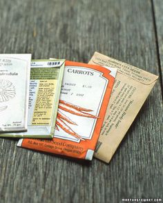 Seed Test - how to tell if seeds are still good to plant