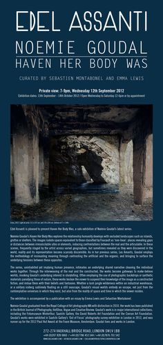 noemie goudal's new solo show in edel assanti 13.09-14.10