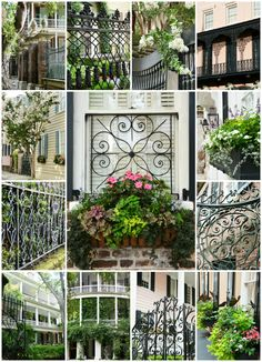 A Charleston Visit: Gates, Gardens, Window Boxes and More – Home is Where the Boat Is Charleston Gardens, Charleston Homes, South Carolina Homes, Charleston South Carolina, Small Courtyard Gardens, Terrace Garden, Window Box Flowers, Window Boxes, Garden Entrance