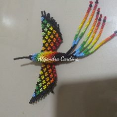 Mi primer colibrí ❤️