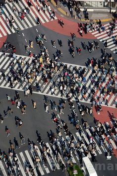 Shibuya crossing , one of the world's busiest, outside Shibuya station , Tokyo Japan / Michael Freeman Photography