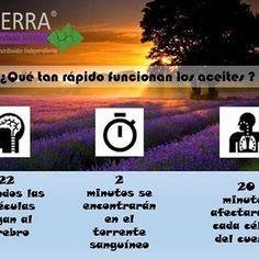aceitesesenciales_yucatan's Instagram Photo - ¿Qué tan rápido funcionan los aceites?  #aceitesesenciales #aceite #esencial #natural #puro #organico #doterra