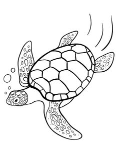 Printable turtle coloring page. Free PDF download at http://coloringcafe.com/coloring-pages/turtle/