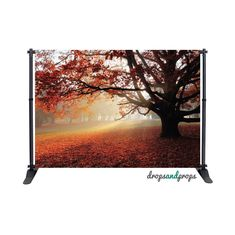 Autumn Leaves – Photography Backdrop